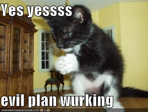 http://kalafudra.files.wordpress.com/2008/08/funny-pictures-your-cats-evil-plan-is-working.jpg