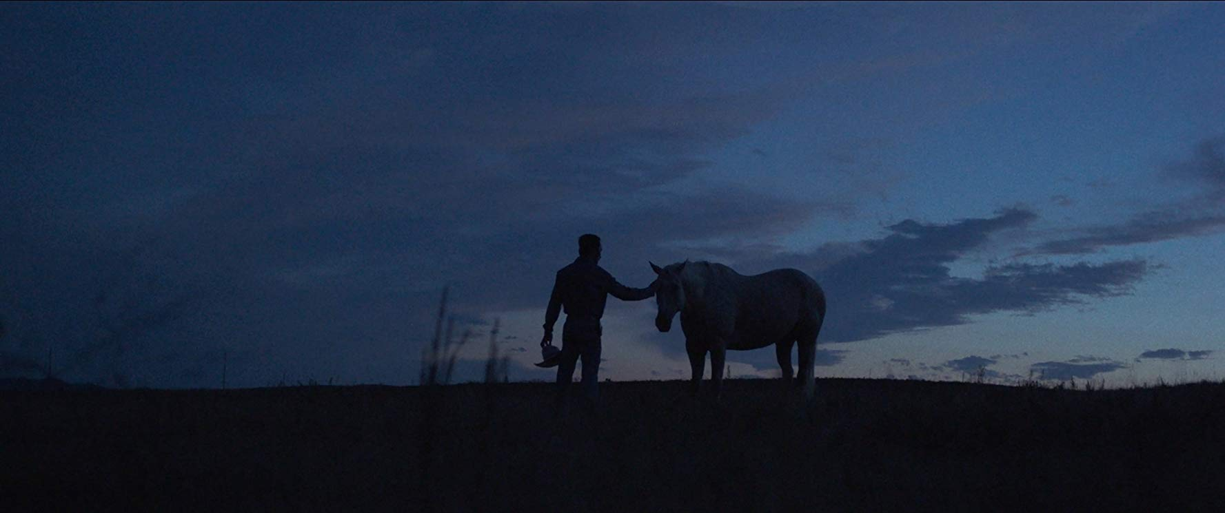 The silhouettes of a person and a horse against a dusky sky.