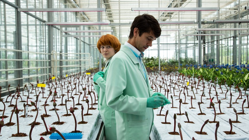 Alice (Emily Beecham) and Chris (Ben Whishaw)  standing between rows of flowers not yet in bloom.