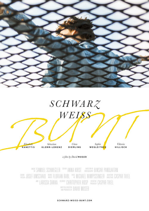 The film poster showing Matilda (Clara Diemling), her arms wide open, as seen through a wire fence.