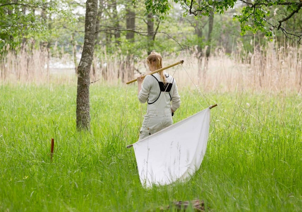 A young woman dragging a net through a meadow to collect some specimens for analysis.