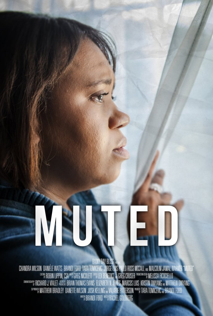 The film poster showing Lena (Chandra Wilson) peering out her window with tears in her eyes.