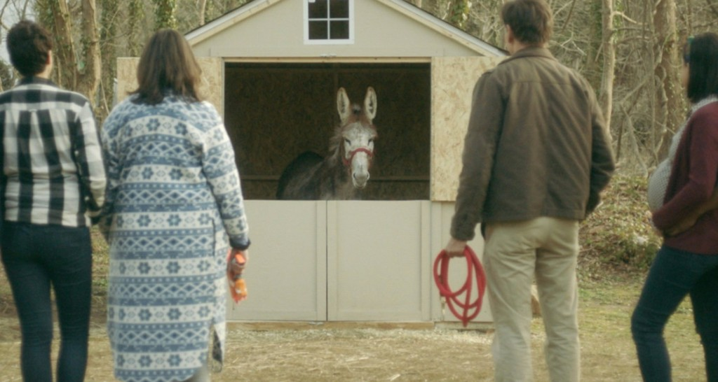 The Owens family facing the donkey in its stable.