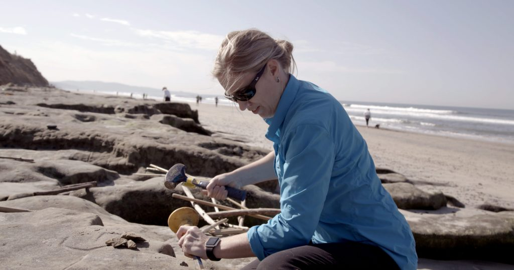Jane Willenbring working on the beach, taking a sample from the ground.