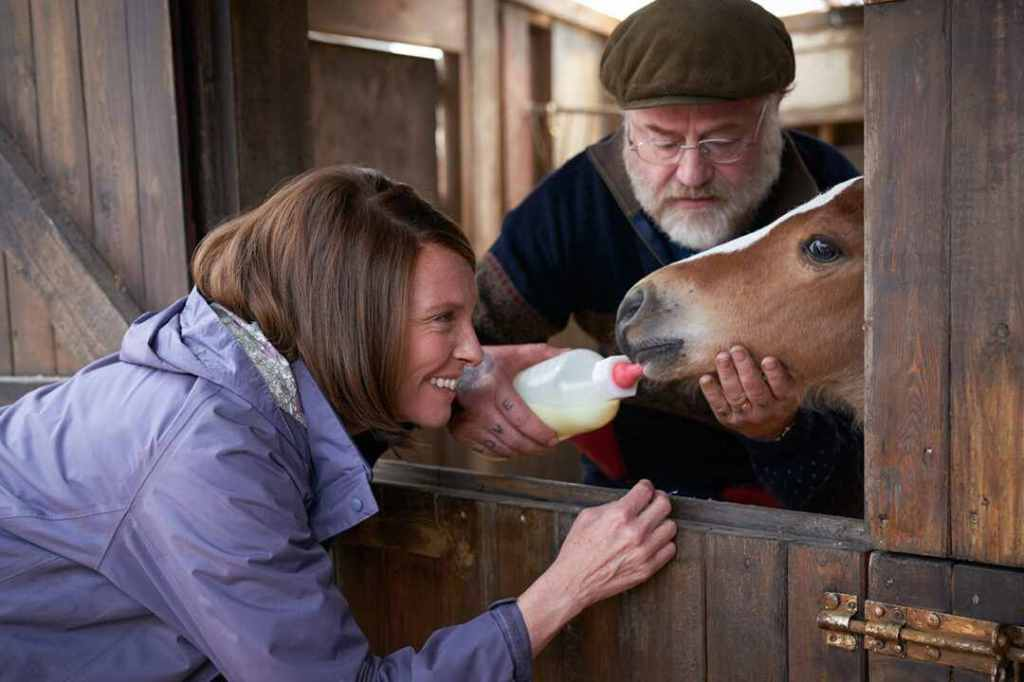 Jan (Toni Collette) and Brian (Owen Teale) giving Dream as a foal the bottle.