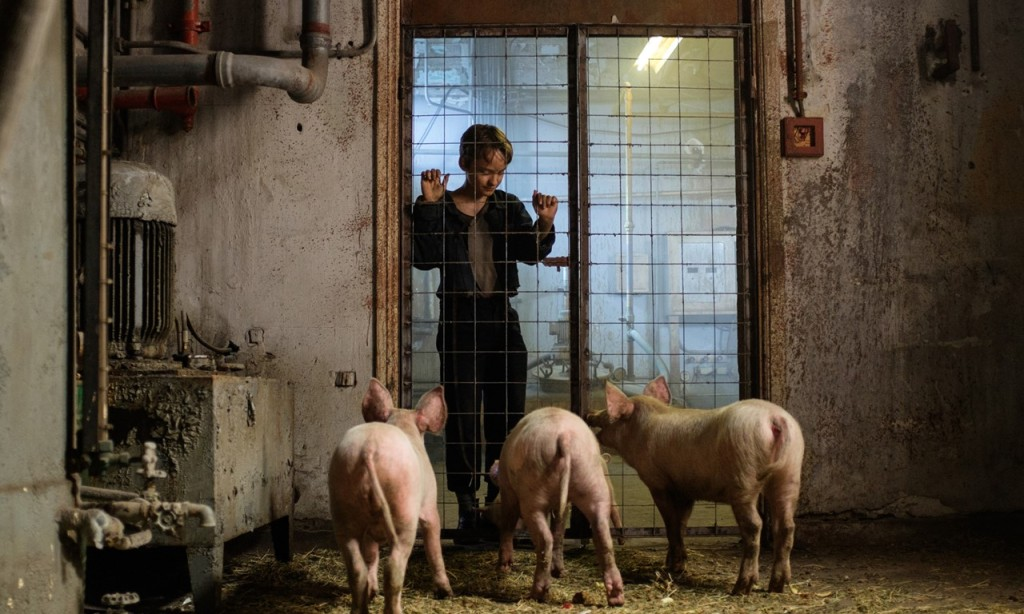 Paul (Claude Heinrich) looking at three piglets in a cage.